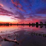 Warsztaty fotografii krajobrazowej Nadbużańskie Podlasie