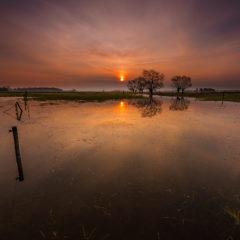 12 najciekawszych miejsc do fotografowania rozlewisk Narwi i Biebrzy