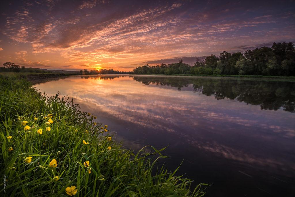 Świt nad Bugiem, w okolicach Mielnika. fot. Marek Waśkiel