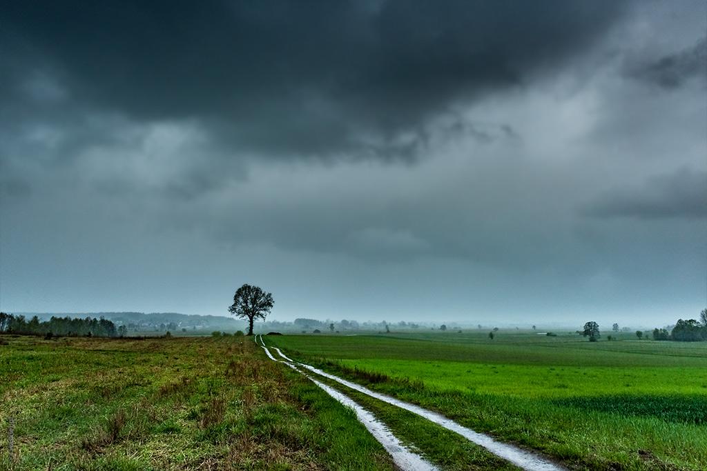 Obraz prezentujący, jak zrobić dobre zdjęcie pomimo złej pogody.