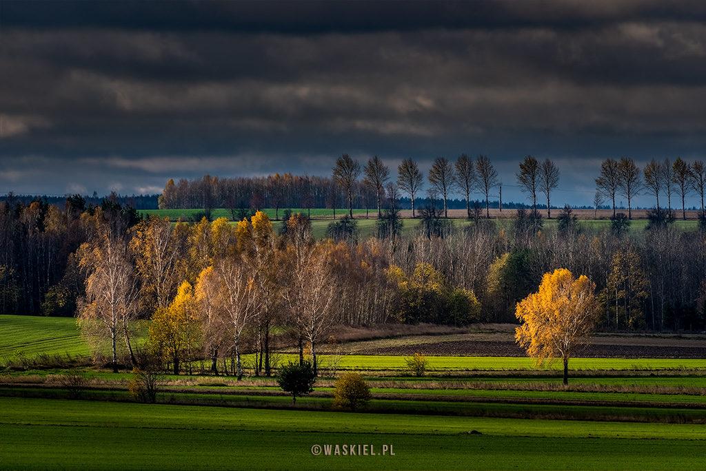 Czy warto obrabiać zdjęcia Marek Waśkiel Blog o fotografii