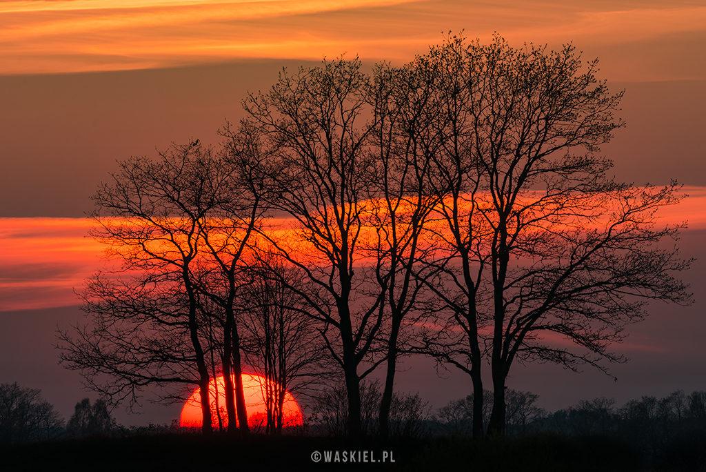 Blog o fotografii Marek Waśkiel teleobiektyw 200-500 mm nikkor