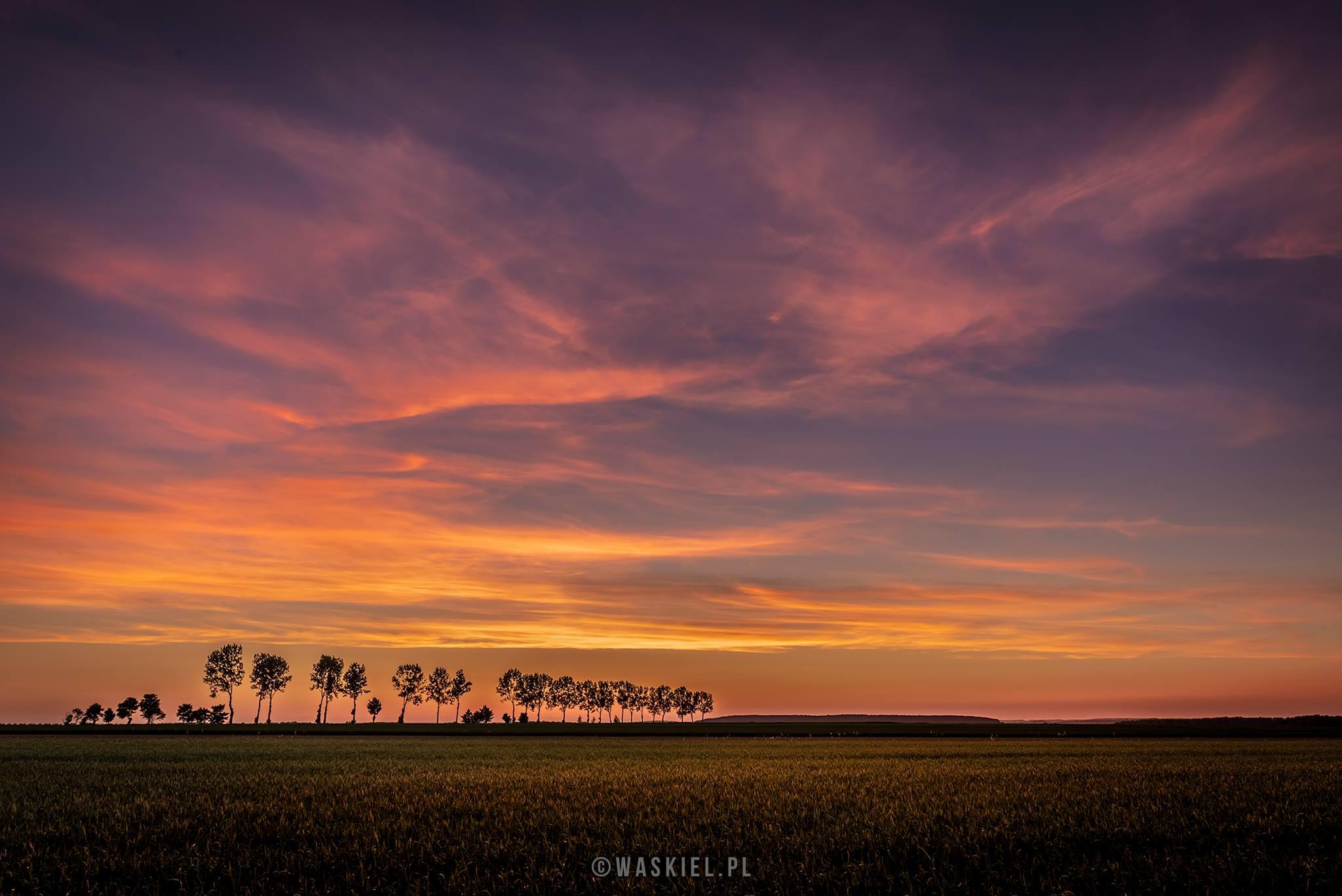 """Zdjęcie pokazujące kolor w fotografii w trakcie trwania tzw. """"złotej godziny""""."""