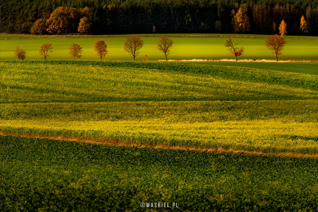 Obraz przedstawiający kreatywne wykorzystanie światła za pomocą aparatu fotograficznego.