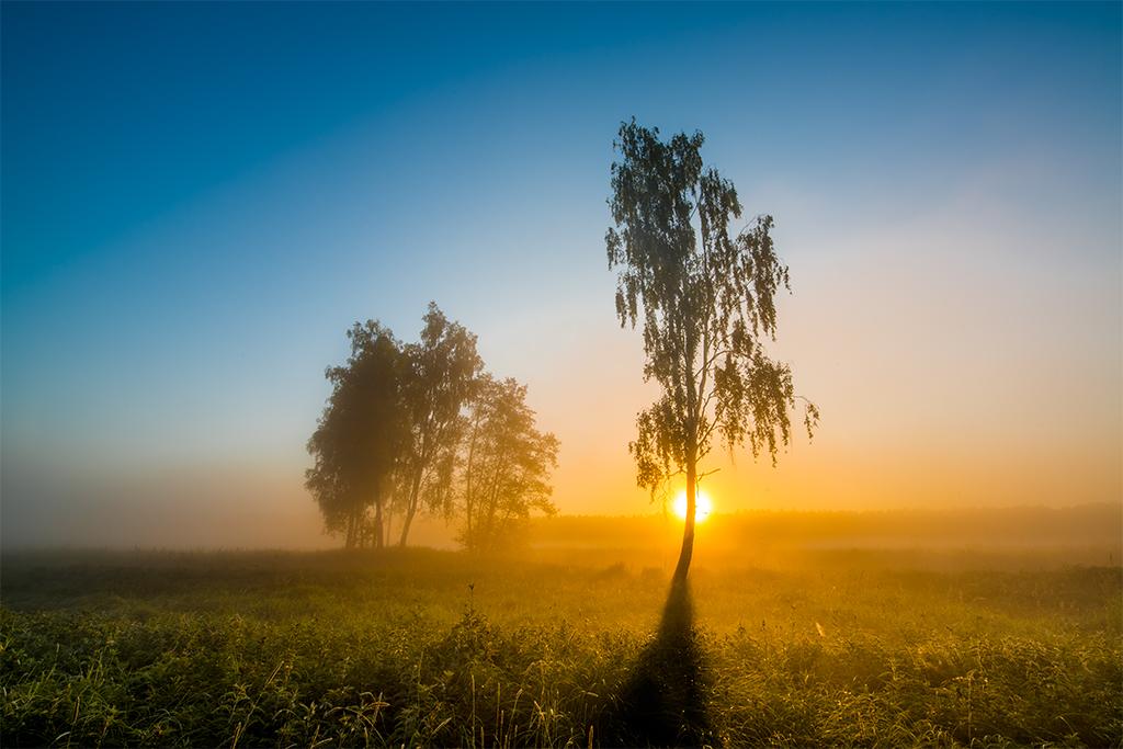 Przykład ilustrujący kreatywne wykorzystanie światła słonecznego w fotografii krajobrazowej.