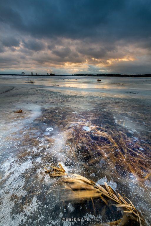 zimowe fotografowanie narew marek waskiel blog
