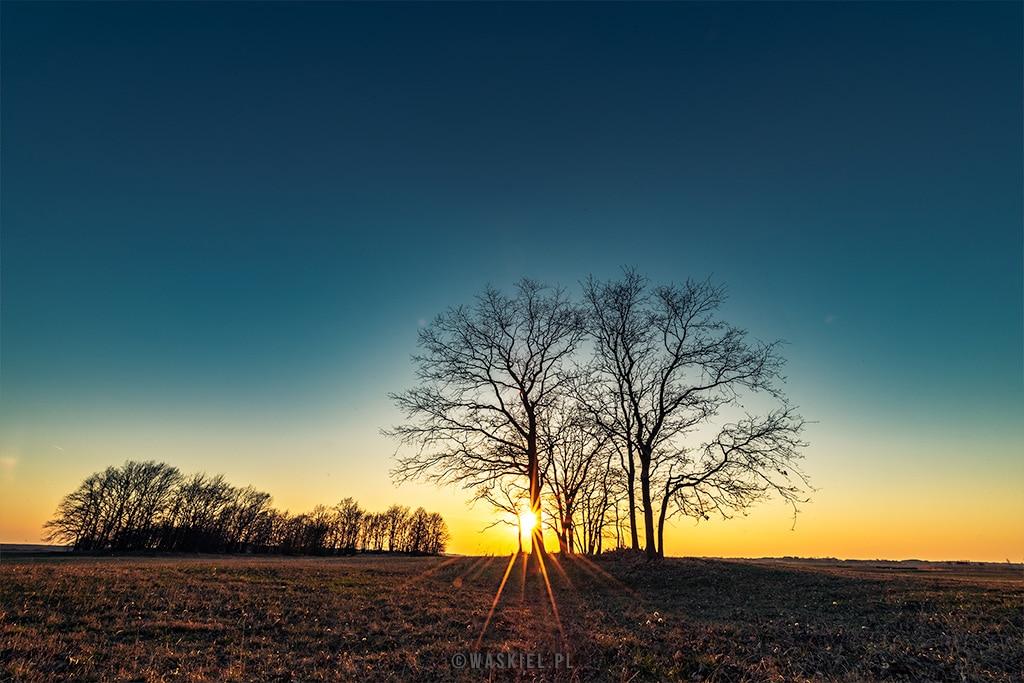 Zdjęcie przedstawiające przykład wykorzystania naturalnego światła w fotografii krajobrazowej.
