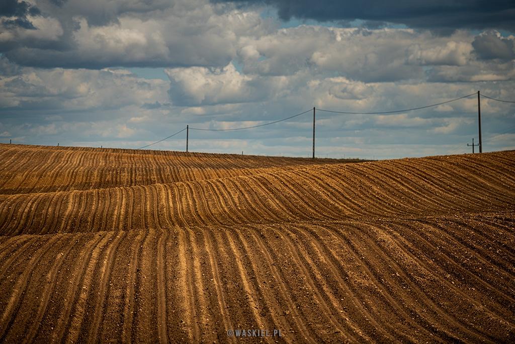 Fotografia krajobrazu, przedstawiająca pola na Podlasiu.