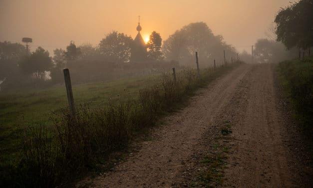Bardzo mglisty wschód słońca #82