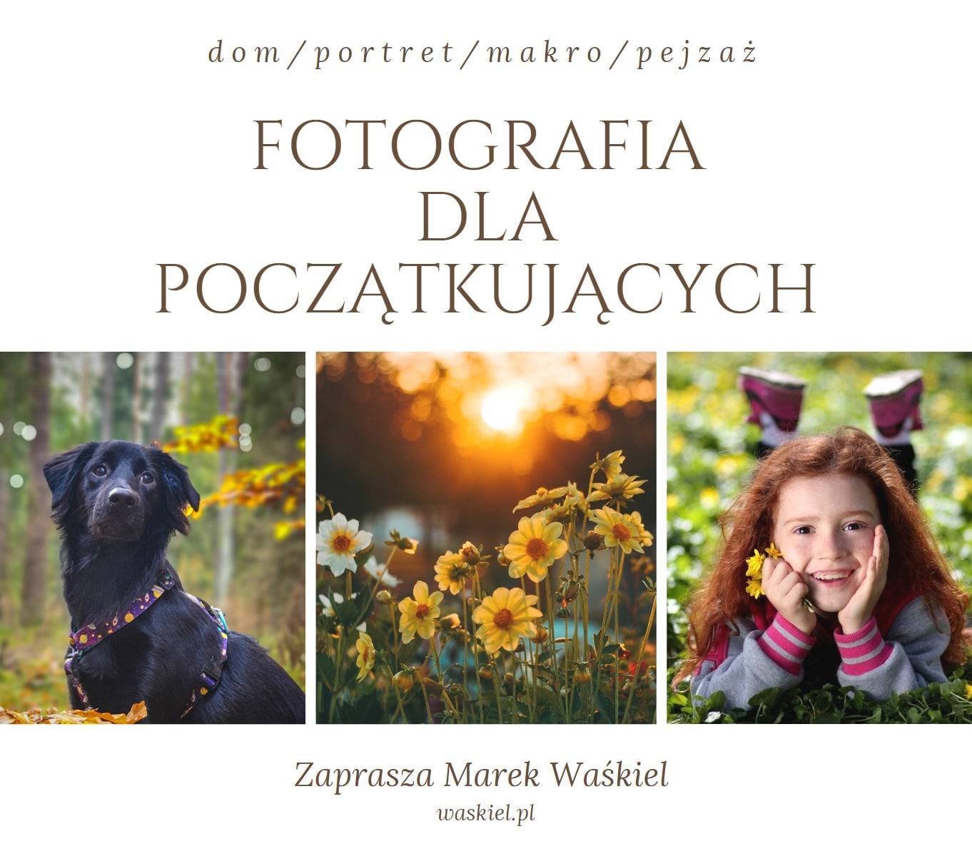 Obraz przedstawiający, jak wyglądają zajęcia w internetowej szkole fotografii portalu Waskiel.pl.