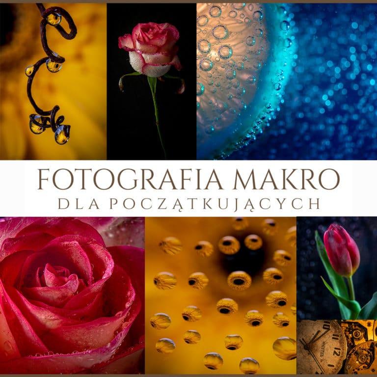 Obraz przedstawiający zdjęcia z kursu fotografii makro dla początkujących.