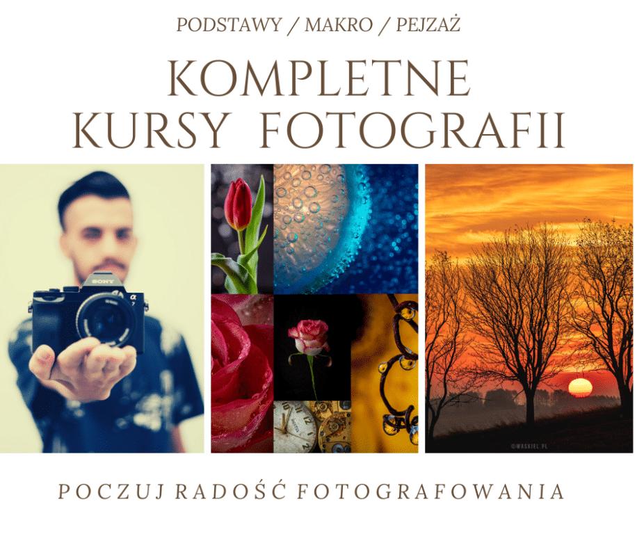 Obraz przedstawiający jak wygląda kurs fotografii online.