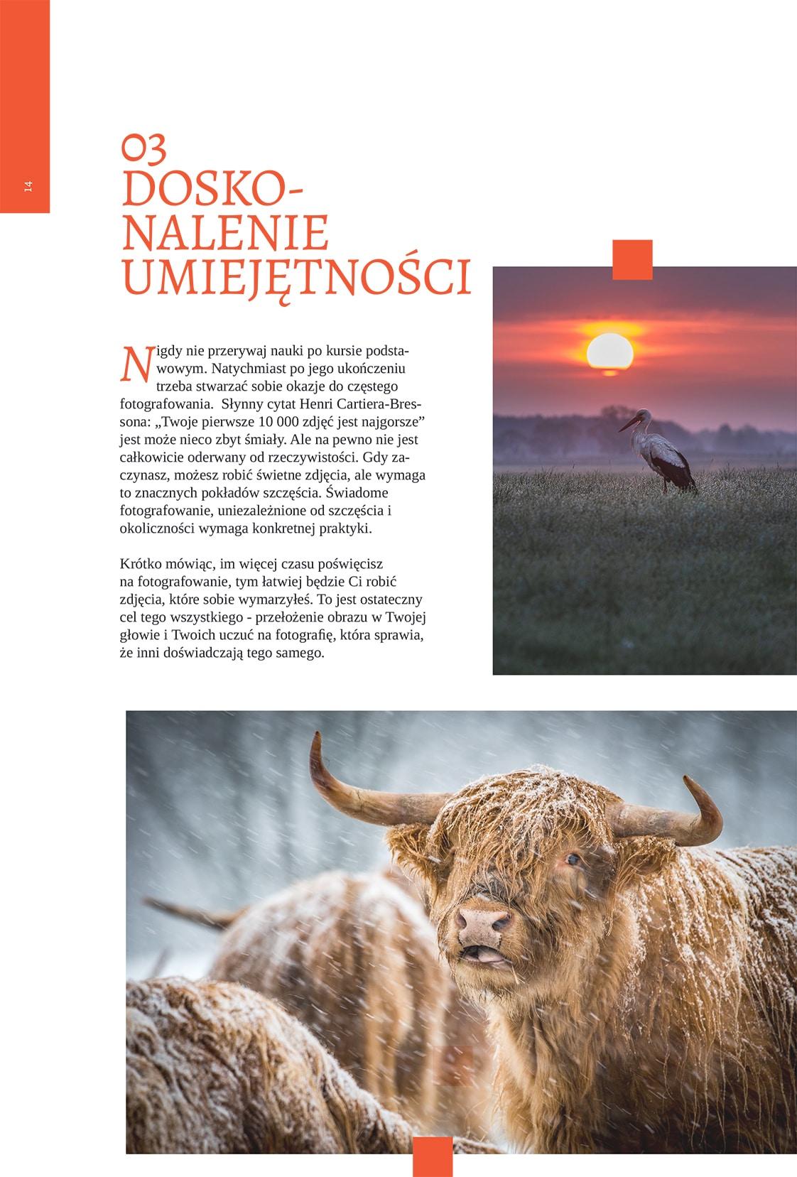 Obraz przedstawiający przykładową stronę z darmowego e-booka o fotografii.