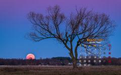 Obraz przedstawiający kalendarz fotograficzny na pulpit komputera na marzec 2021.